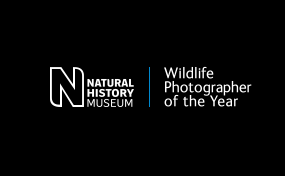 2014 finalist for the NHM photographer of the year Awards