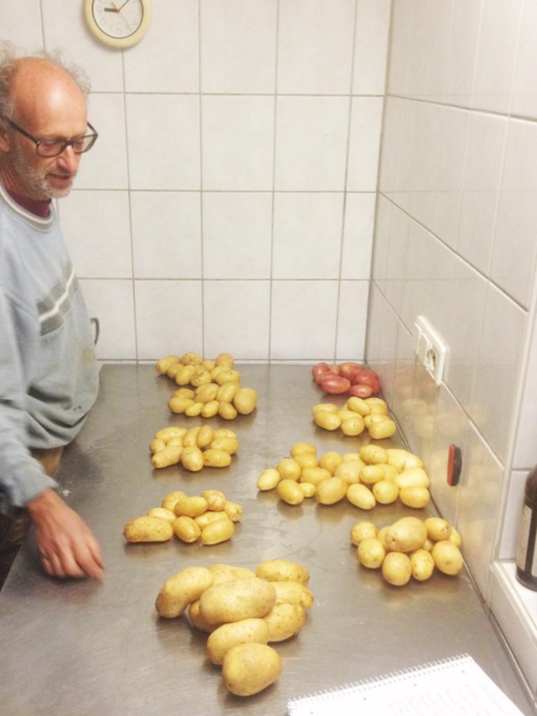 各種馬鈴薯
