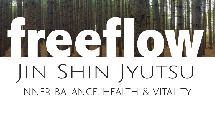 Freeflow Jin Shin Jyustu - Paul Bergstrom