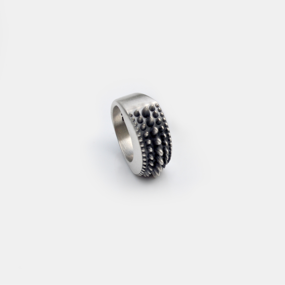 Marisa_Lomonaco_Hudson_Valley_custom_Jewelry_0002_Sterling_Silver_Points_Ring.jpg
