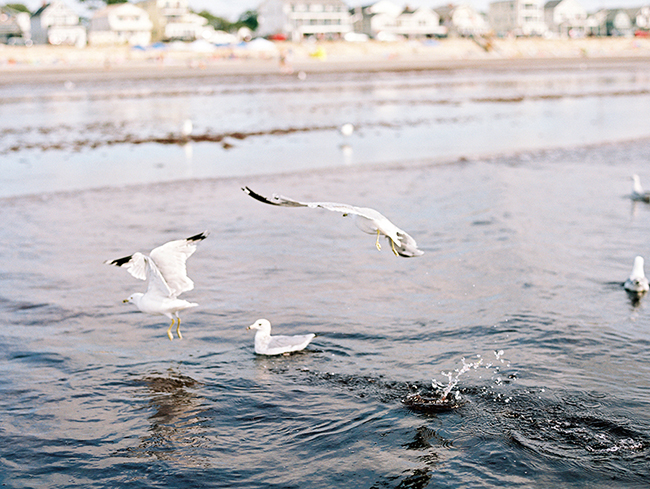 Travel Photographer_York Beach Maine_013.jpg