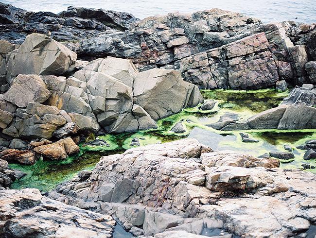 Travel Photographer_York Beach Maine_033.jpg