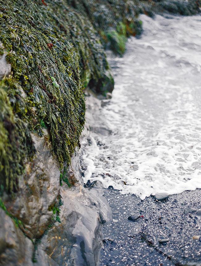Travel Photographer_York Beach Maine_035.jpg