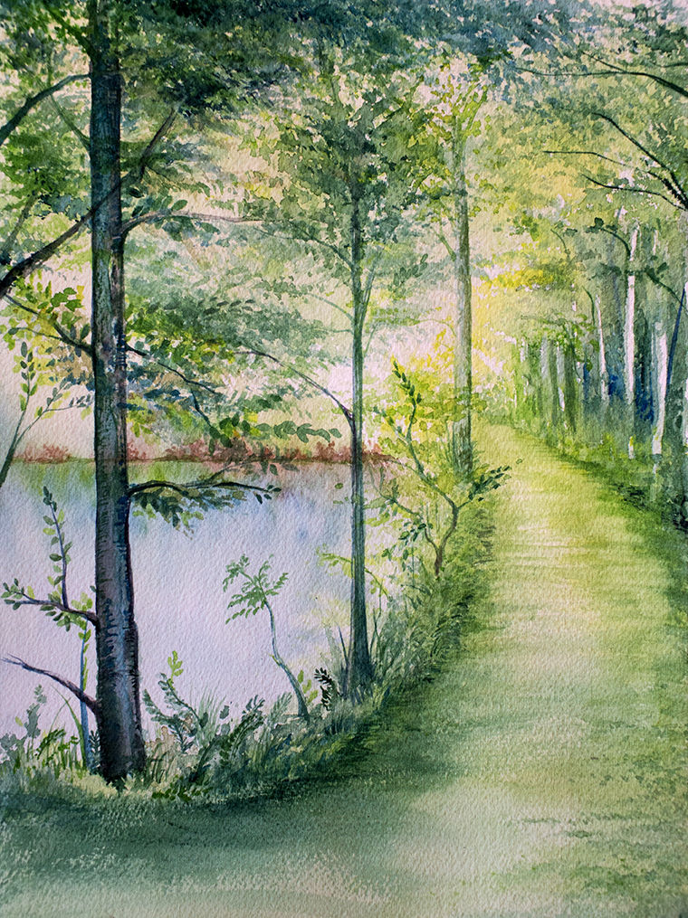 Forest Light 11, Watercolor