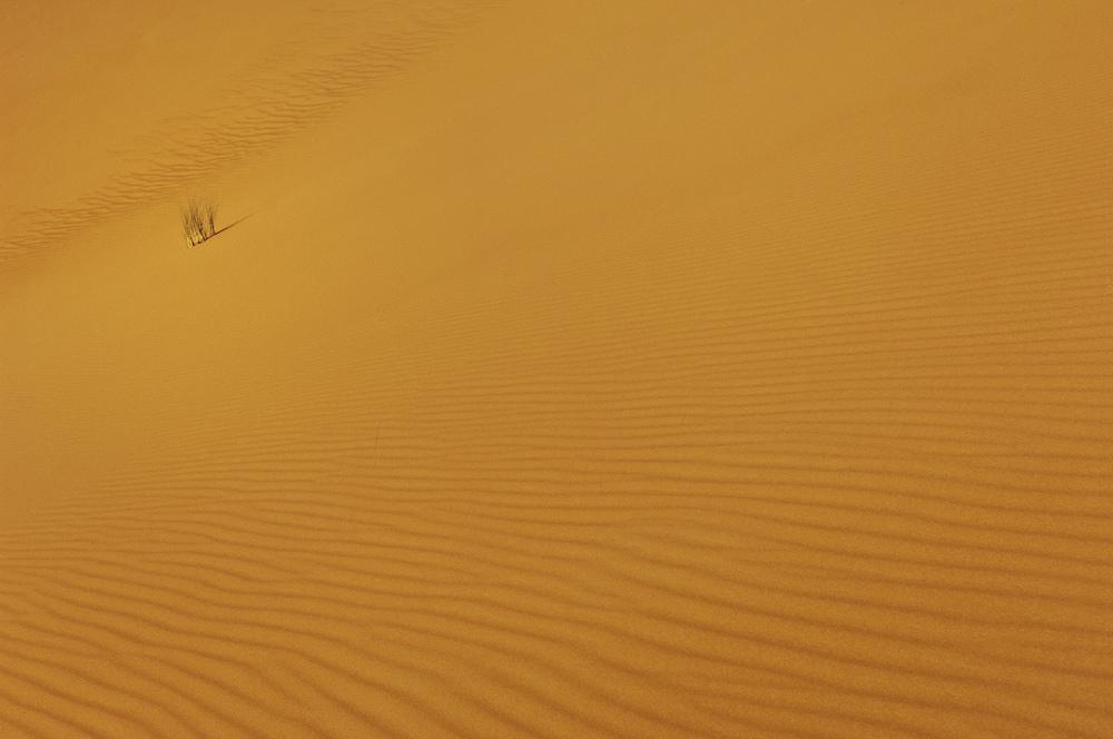 DUNES_SAHARA_STOKES_06.jpg