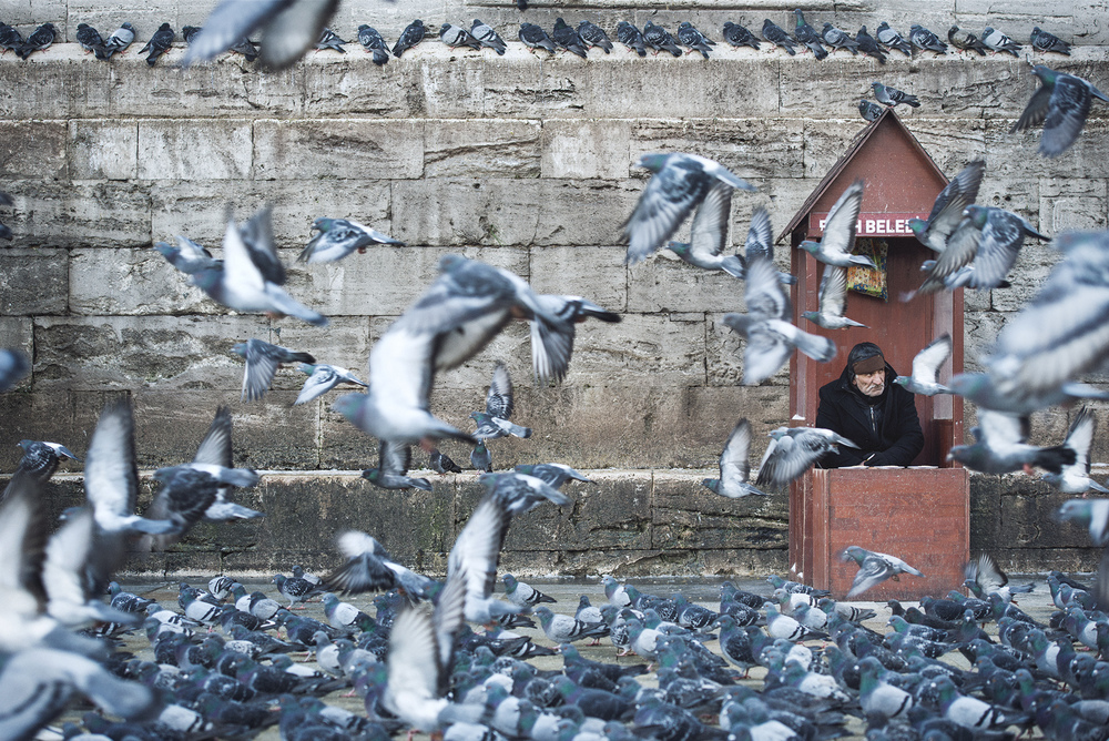ISTANBUL_STOKES_13.jpg