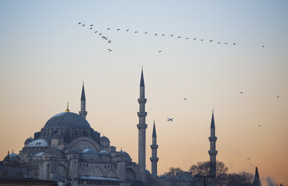 ISTANBUL_STOKES_01.jpg