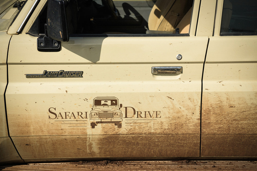 Safari Drive : Tanzania