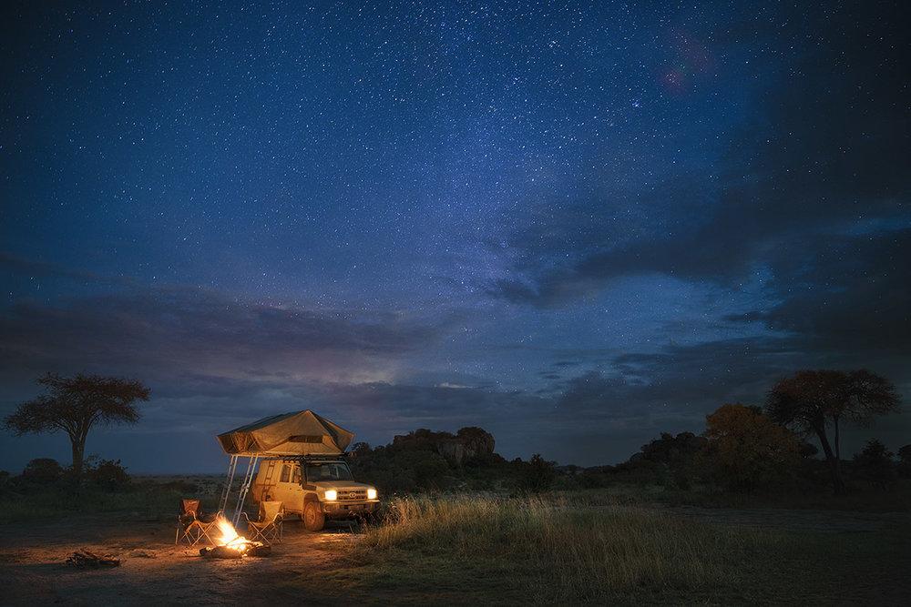 Safari Drive : Tanzania -