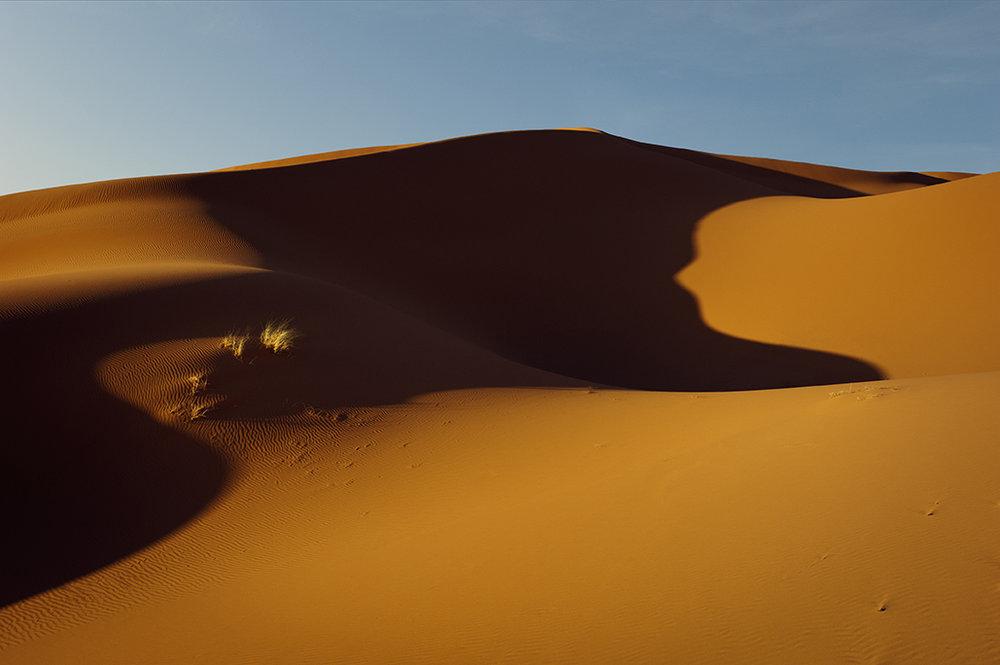 Sahara : Dunes -