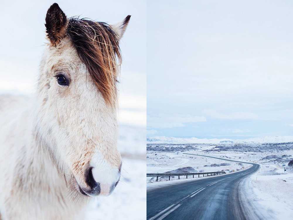 APitts_Iceland-3985 copy.jpg