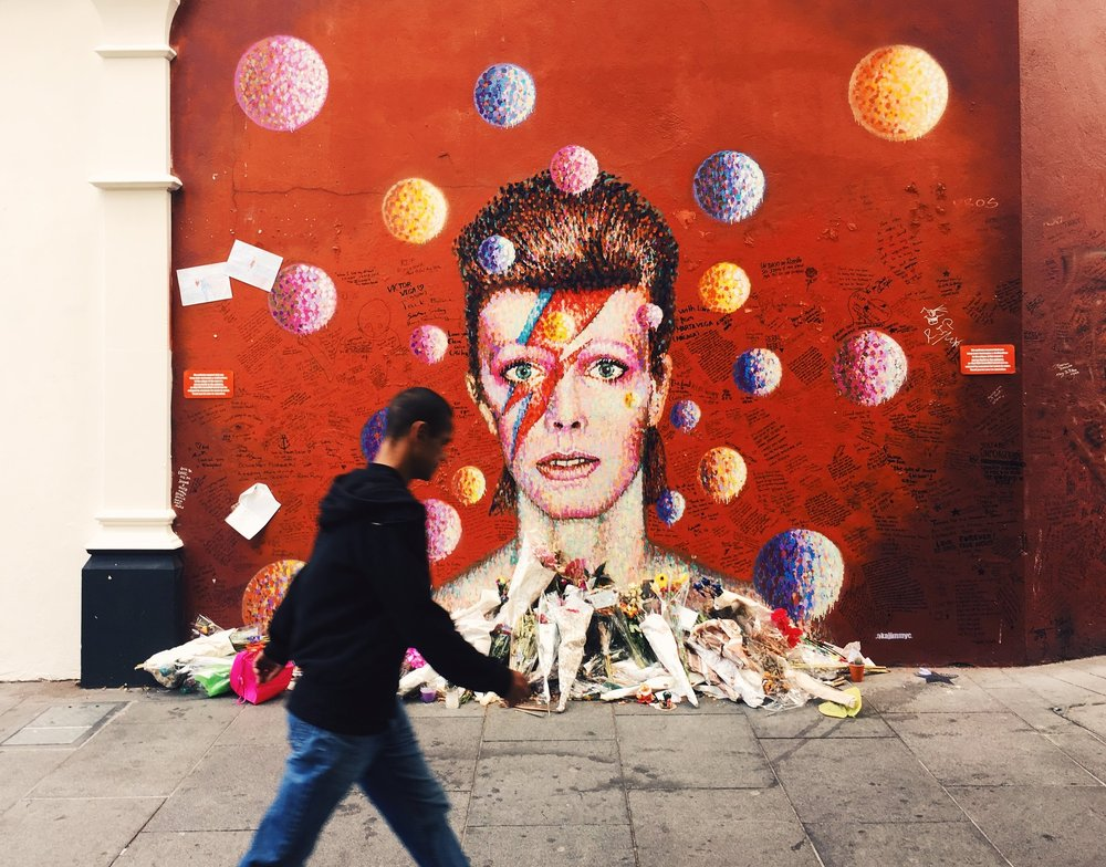 Goodbye Bowie :(