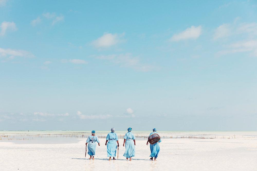 APitts_Condor_Zanzibar_097-2_RT.jpg