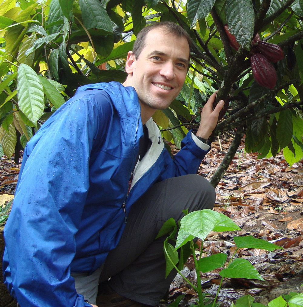 Founder & Chief Cacao Nut, Peter Moustakerski -- among some cacao trees in Costa Rica