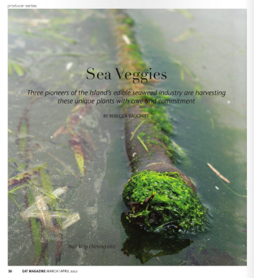 sea-veggies-rebecca-baugniet-eat-magazine-march-april-2012.png