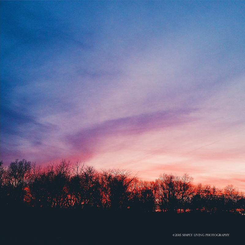 Winter Sunset by ©simply living photography featured at dhdphotoaday