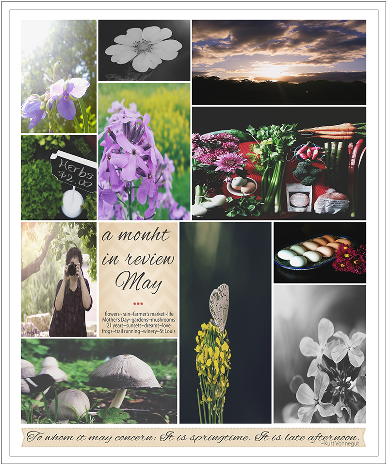 Month in Review May by Lisa Kerner ©Simply Living Photography