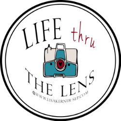 Life Thru the Lens by Lisa Kerner