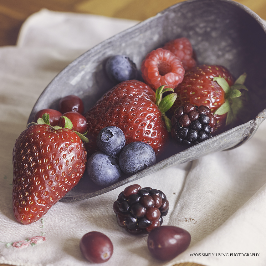 Berries I by Lisa Kerner ©Simply Living Photography