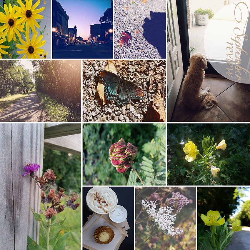 September Review by Lisa Kerner ©Simply Living Photography