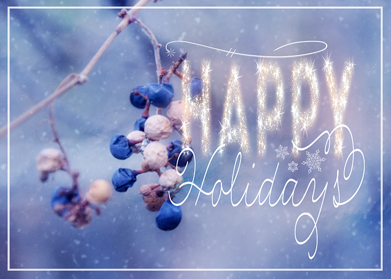 Happy Holidays by Lisa Kerner ©Simply Living Photography
