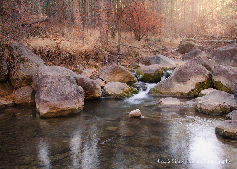 Icy Water by Lisa Kerner ©Simply Living Photography