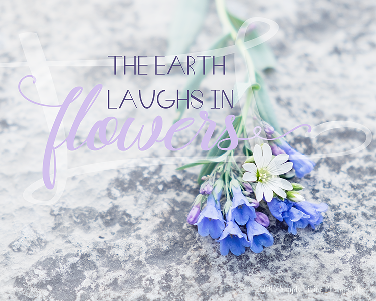 The Earth Laughs | Lisa Kerner | Simply Living Photography