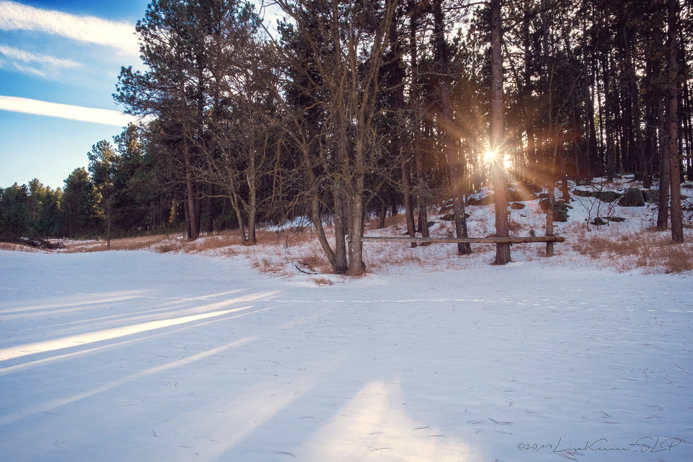 Shades of Winter | Winter Shadow | Lisa Kerner | Simply Living Photography | life-n-reflection