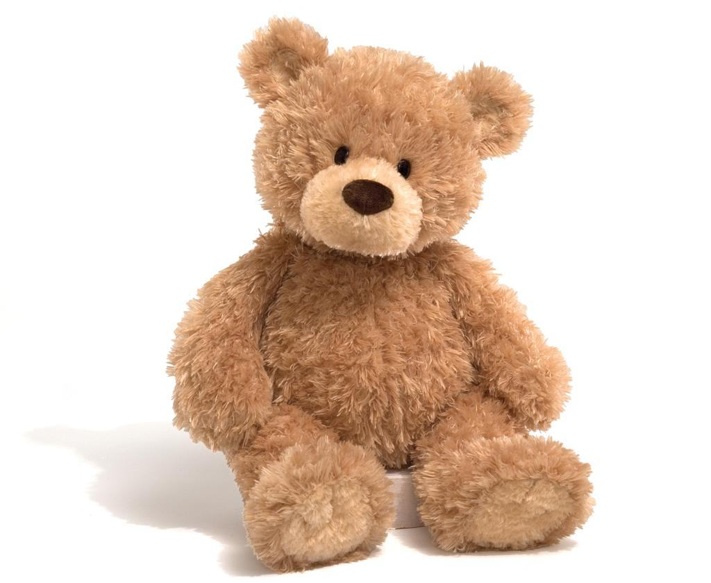 Teddy Bears Picnic 2015 — The Thomas Hayes Trust Suicide ...