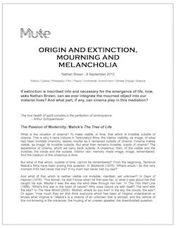 Origin and Extinction