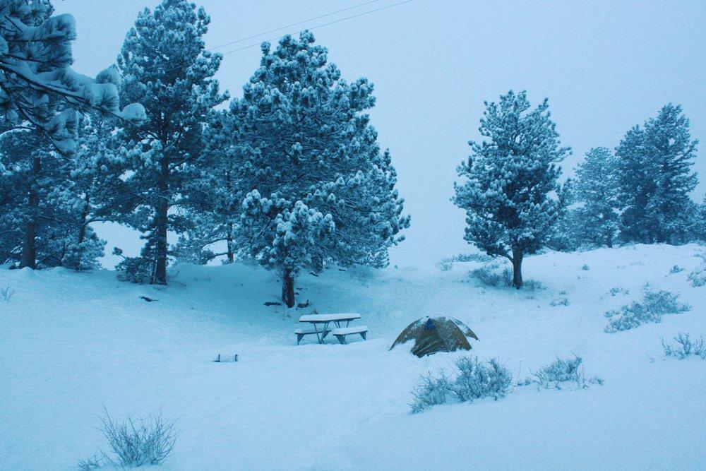 Snow day.