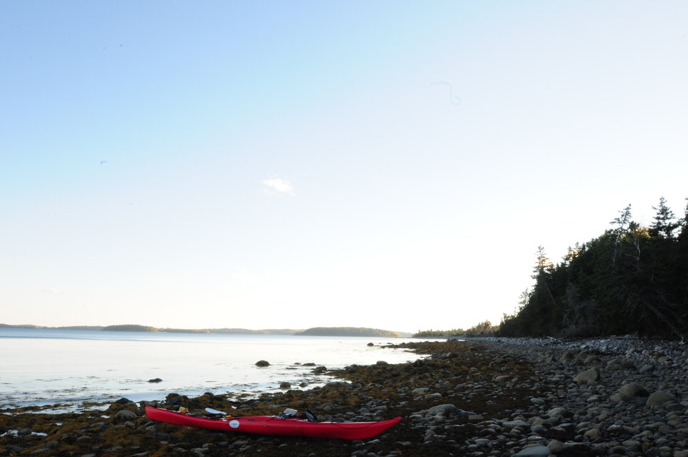 *Rous island, shore looking west with kayak.JPG