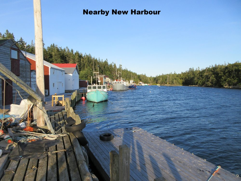 5, New Harbour 1.JPG