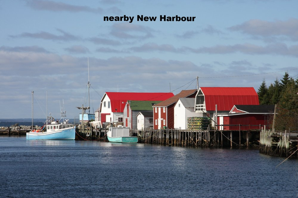 6, New Harbour 2.JPG
