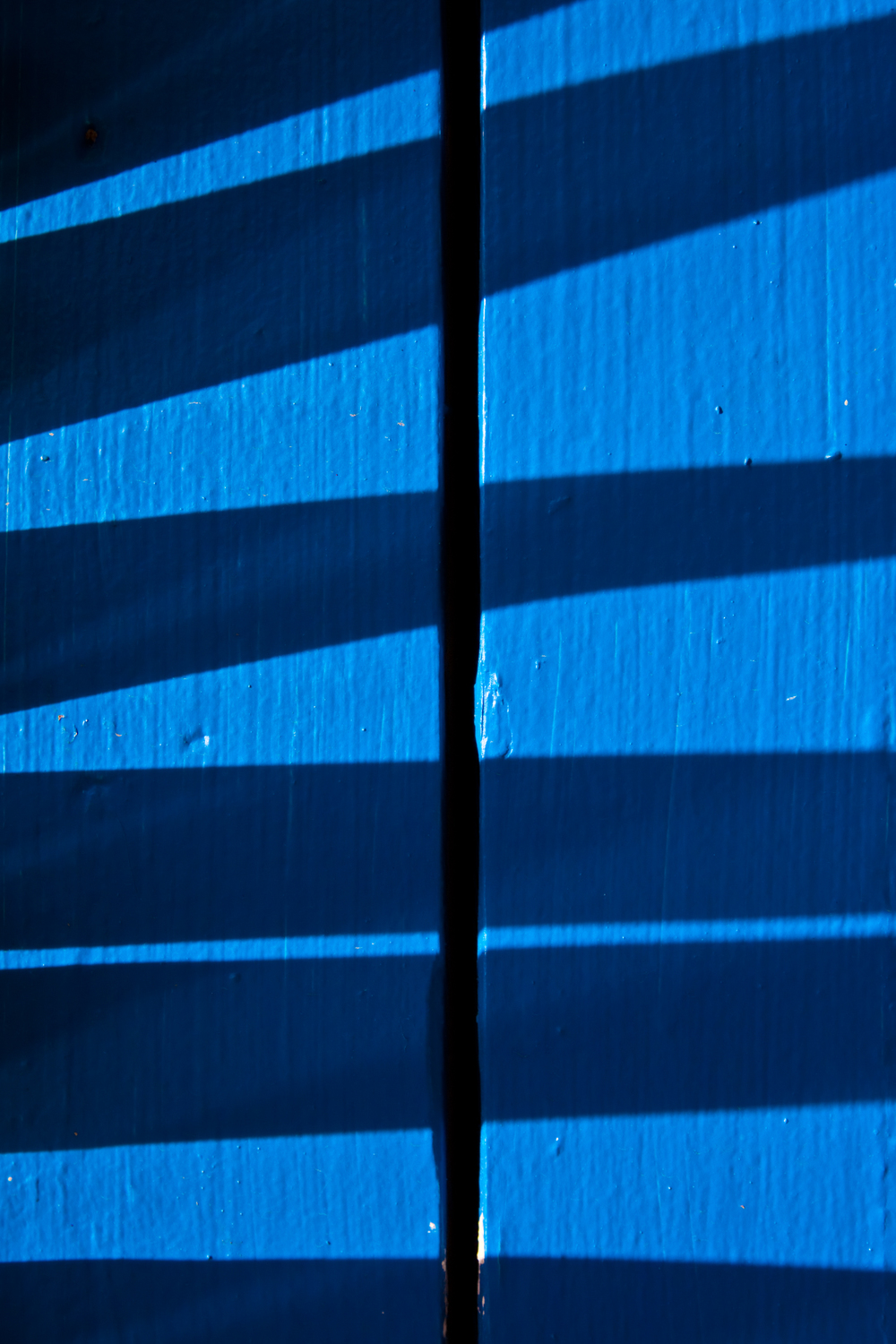 Shadow detail of a palm branch against a blue post.
