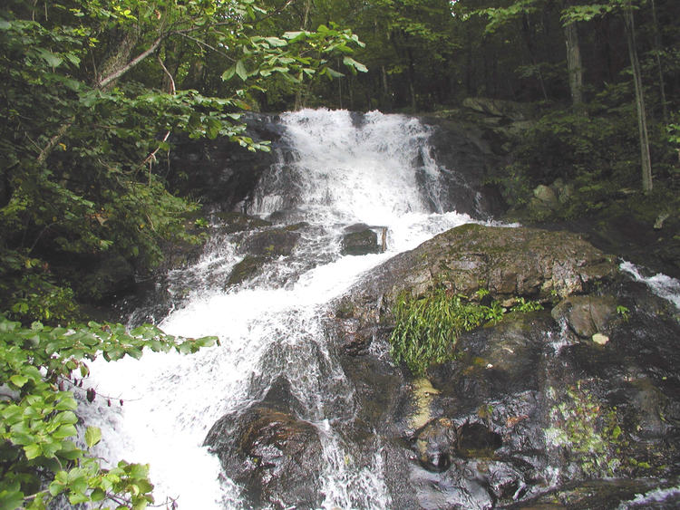 More on the waterfall at  The Nature Foundation at Wintergreen website
