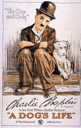 Chaplin and his Dog!