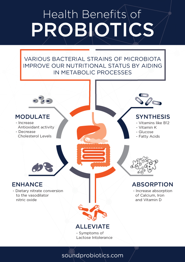 probiotic-benefits-infographic