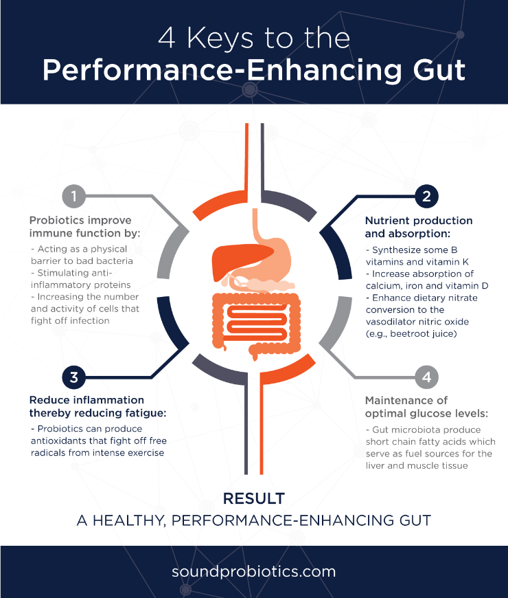 gut-health-infographic