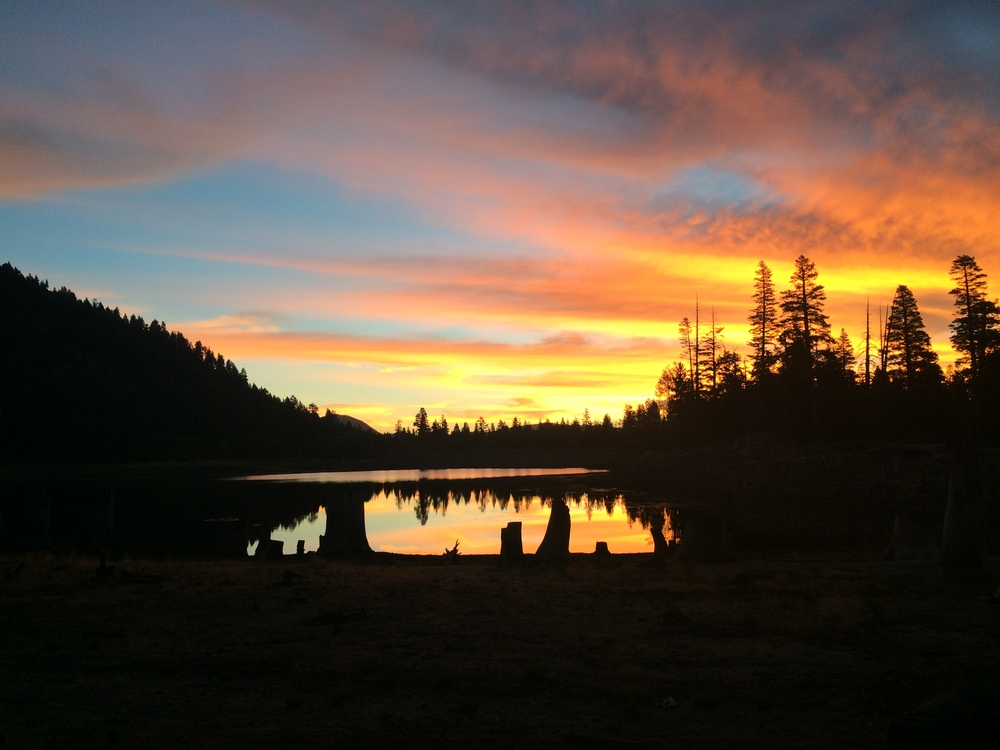 Sierra Nevadas, California