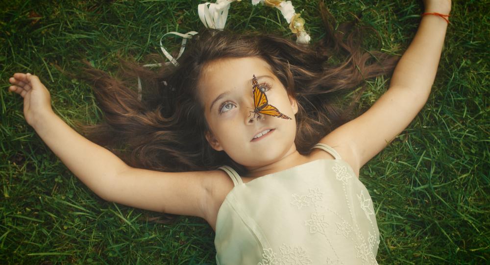 Macy's Butterfly