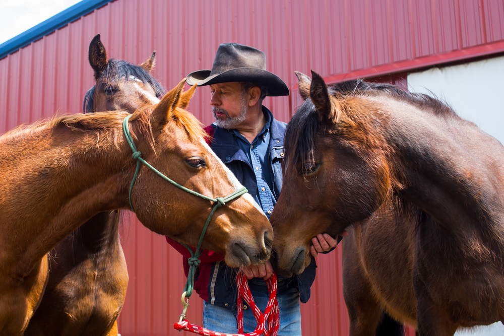 Private Investigator Jeff Patterson shares a quiet moment with three of the horses he uses in Herd 2 Human, an equine therapy program he founded after seeing the positive effects of his horses on victims of trauma.
