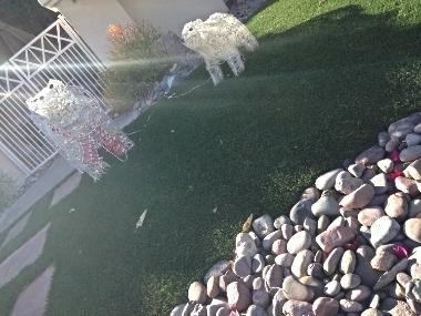 Polar Bear Christmas lawn display in Sun City, CA.