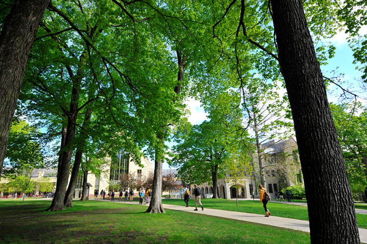 St. Olaf College Campus Green.jpg