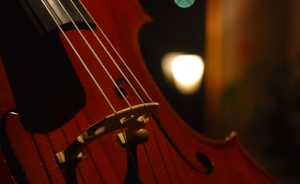 Cello with soft light in background.jpg