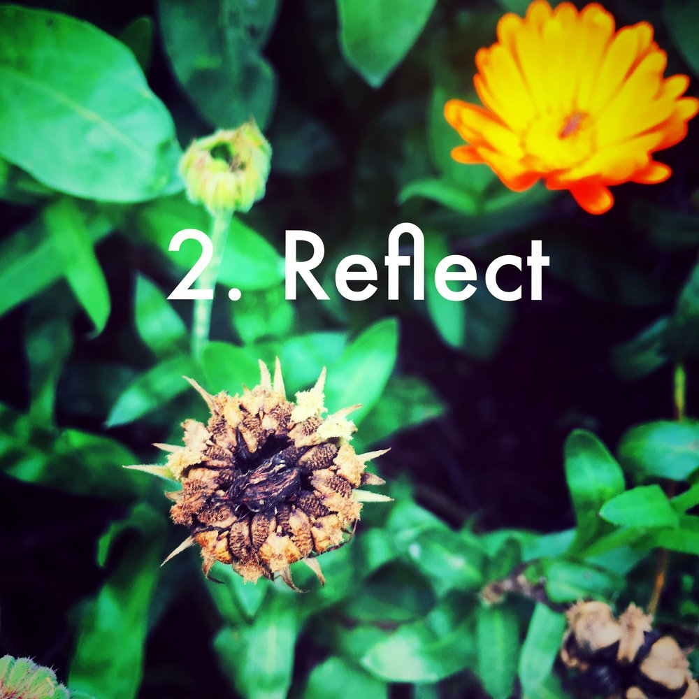 2. Reflect - Now that you're beautifully paused, this is a good time to ask yourself about the phase you're leaving. (Journalling is a great tool.)Where are you coming from?What were your strongest lessons?What do you want to leave behind you?