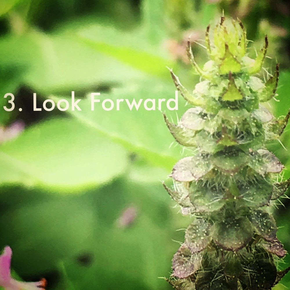 3. Look Forward - Where are you headed in this next phase?What are you looking forward to?What are your fears or insecurities? How can you address them?Where can you draw upon support as you'll need it?How do you want to grow in this next phase?