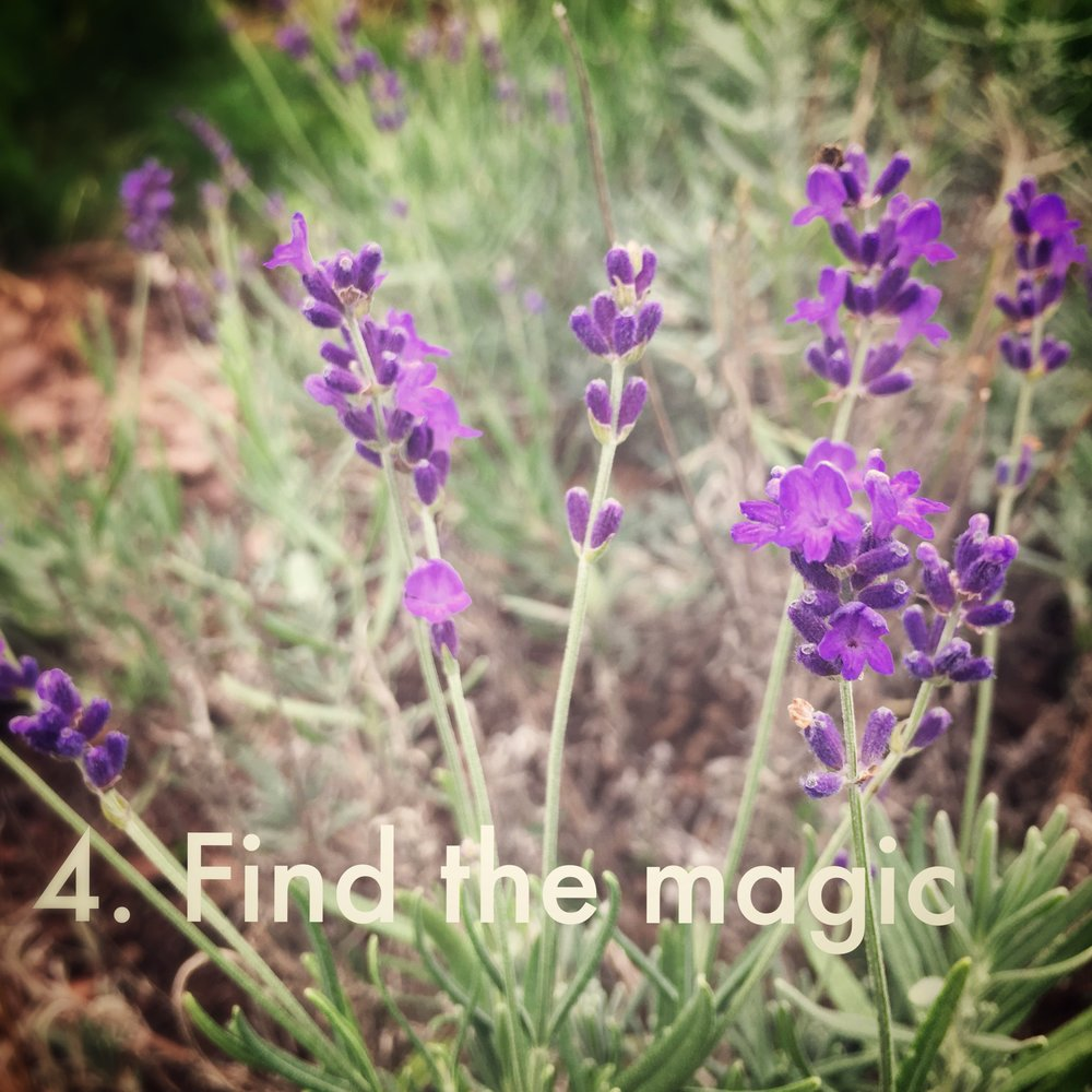4. Find the Magic - What is unique about this time?What can you enjoy now that you weren't able to enjoy in the past?How are you responding to this liminal time?In what ways can you be more gracious to yourself?