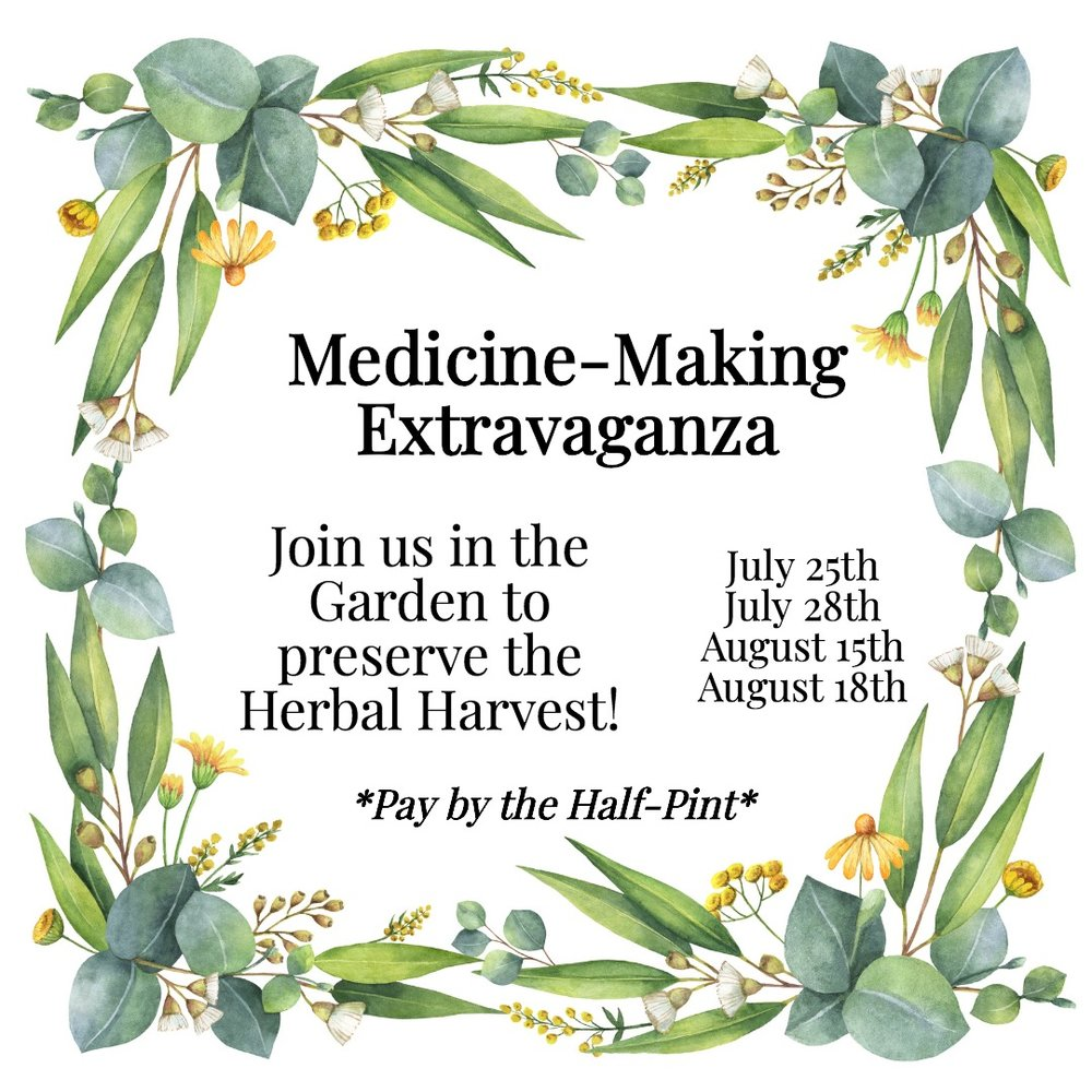 Medicine Making Extravaganza for Home Apothecary