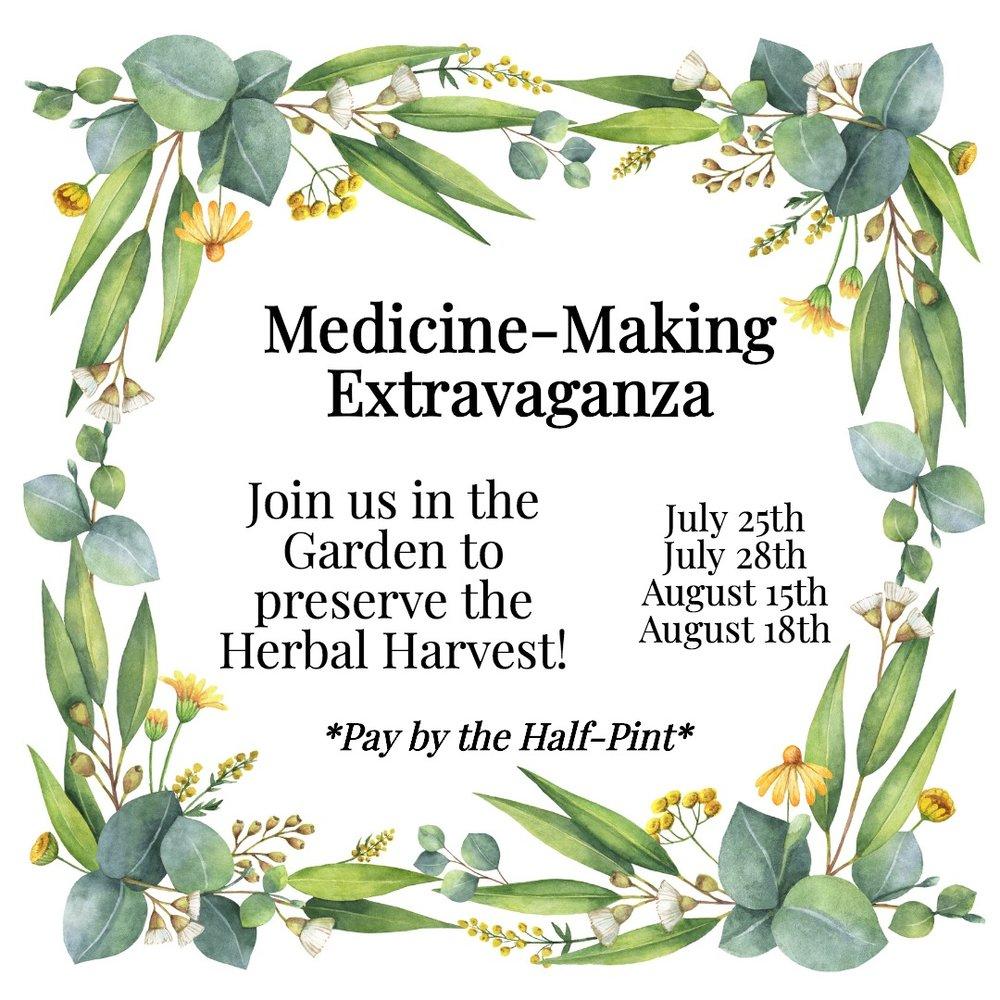 Medicine Making Extravaganza for Home Apothecary